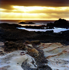 Point Lobos Sunset