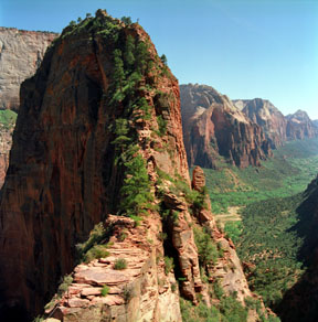 Angels+landing+trail+zion