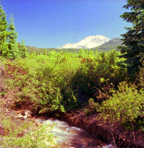Mount Shasta, South View